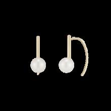 Jaune Delicat Earring(14K)