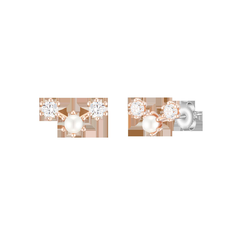 [CONTE] Basic Blossom 귀걸이 (JJCEEI0BF551SR000)